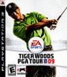 Обложка игры Tiger Woods PGA Tour 09