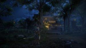 Деревня ночью Toukiden 2